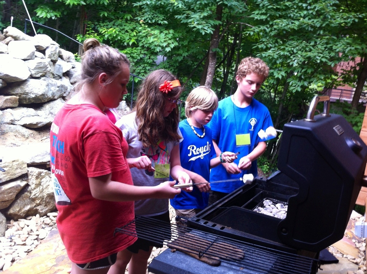 cooking smores